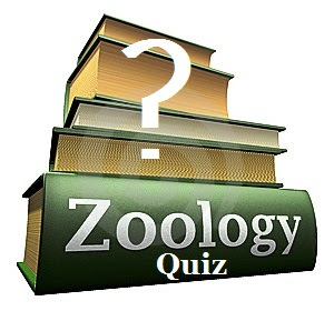 Biology Gk In Hindi Quiz with Question and Answers Quiz