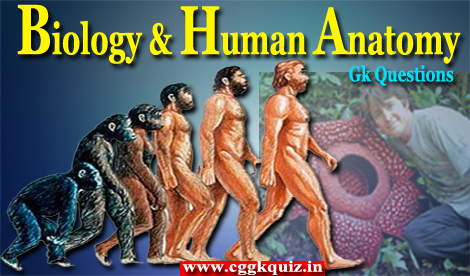 one liner general knowledge questions about Hindi biology Gk questions with answers | top important facts of biology Gk questions in Hindi PDF with human body-hominid species anatomy, beauty study and plants science like zoology online thesis, research Hindi Gk quiz PDF | online biology and human anatomy Gk in Hindi.