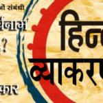 noun and pronoun in hindi grammar questions
