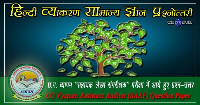 CG VYAPAM Hindi Vyakaran Gk Objective Question Answer in Hindi, Hindi Vyakaran General Knowledge Question in Hindi for competitive exams. Vyakaran Hindi Gk in pdf. Hindi Grammar question answer. cg vyapam senior and assistant auditor (saaf) question paper.